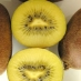 Kiwi Giallo Golden Delight (impollinatore)