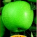 Melo Granny Smith